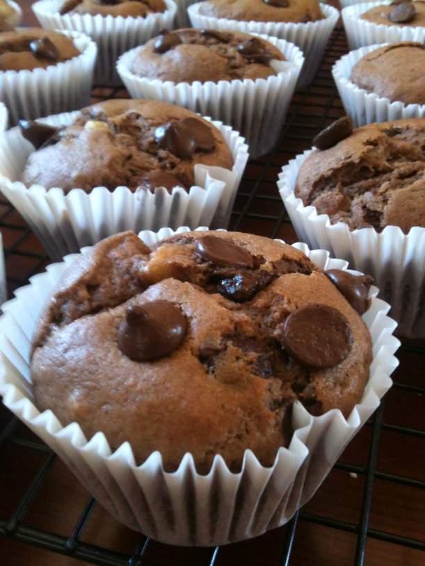 choc muffins