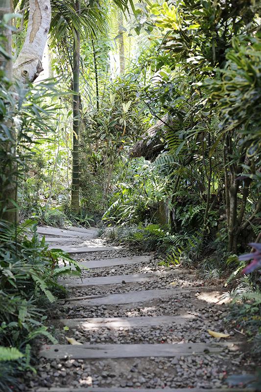 Detox in Bali: Breaking the fast (2/6)