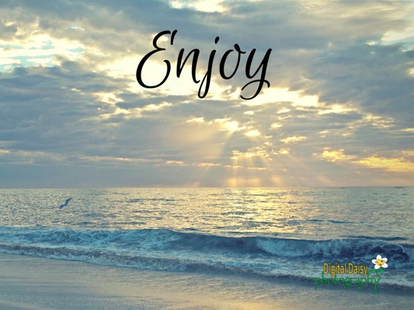 Enjoy 2015