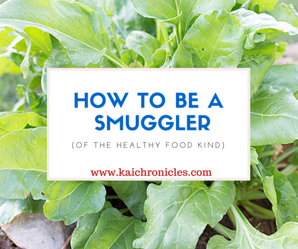 How to be a Smuggler